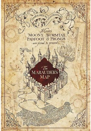 Poster Harry Potter - Marauder's Map, 91.5x61cm